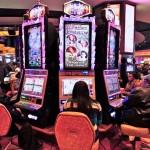 Slot Machine e Video Slot: un settore florido anche nel 2014